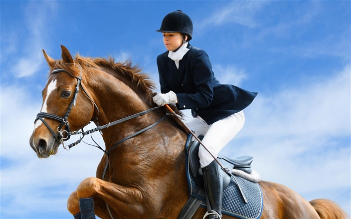Equestrian-Sport wallpaper Views:5600