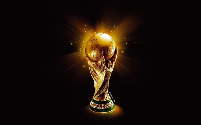 FIFA World Cup-Sport wallpaper Views:5897