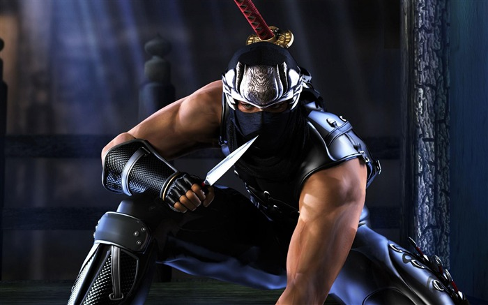 NINJA GAIDEN 3 Game HD Wallpaper Views:17734