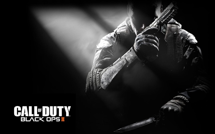 The Call of Duty-Black Ops II Game HD Wallpapers 02 Views:4114