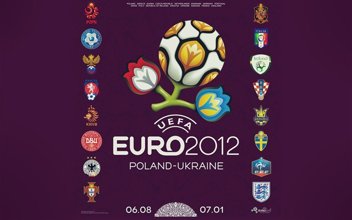 Euro 2012 HD desktop wallpaper Views:14317