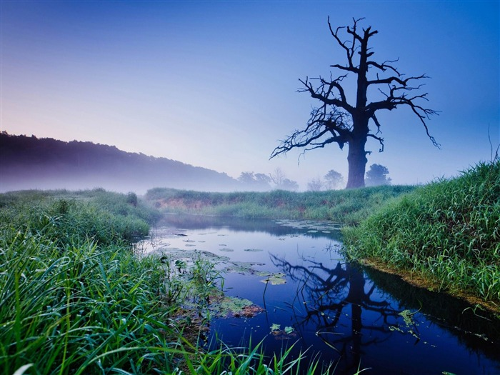 misty morning-rivers Landscape Wallpaper Views:6673 Date:6/20/2012 10:04:36 PM