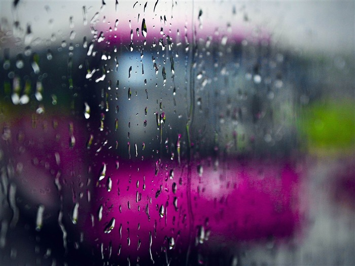 rainy day-High Quality wallpaper Views:6068