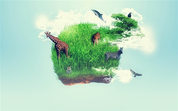 wildlife-Aero Creative wallpaper Views:4211