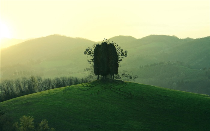 Green Hill-Nature Landscape Wallpaper Views:5887