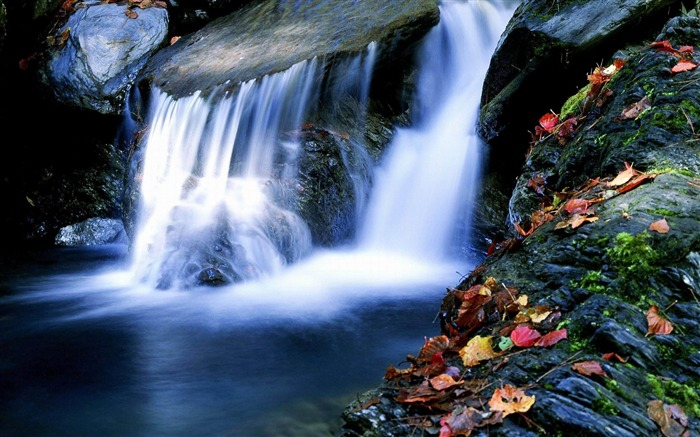 Waterfall Maple-Nature rivers Landscape Wallpaper Views:9840