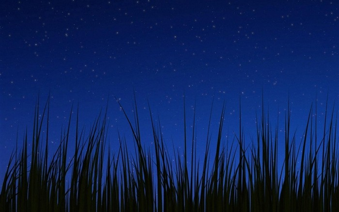 night-Android advertising wallpaper Views:5008
