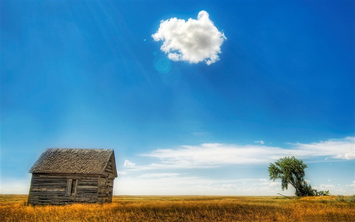 warm day-Nature Landscape Wallpaper Views:3963