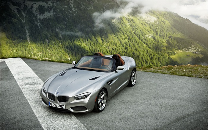 BMW Zagato Roadster Auto HD Wallpaper Views:7173