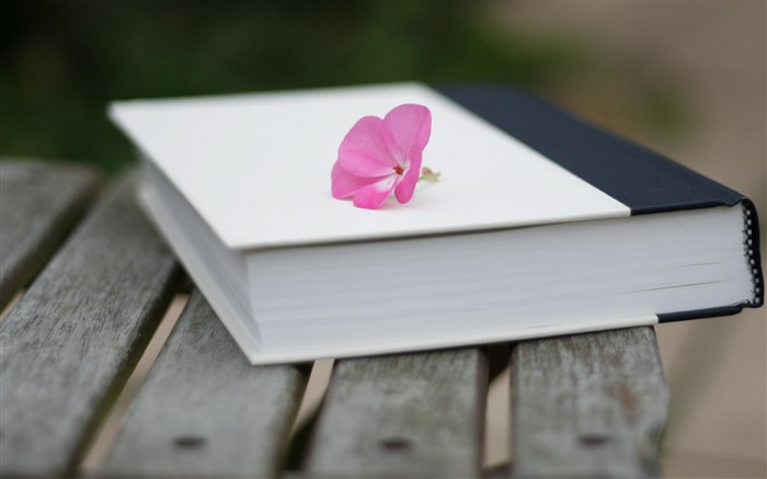 Book Flower-High Quality wallpaper Views:9487