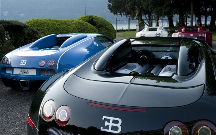 Bugatti-Cars desktop wallpaper Views:6505