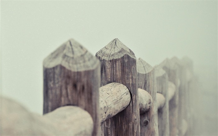 Fence Fog-High Quality wallpaper Views:5576