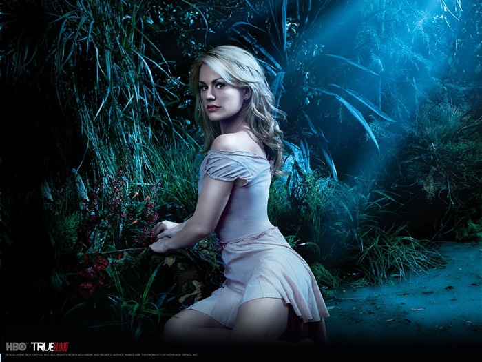 True Blood-American TV series Wallpaper 01 Views:3131