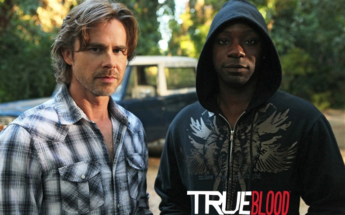 True Blood-American TV series Wallpaper 19 Views:2282
