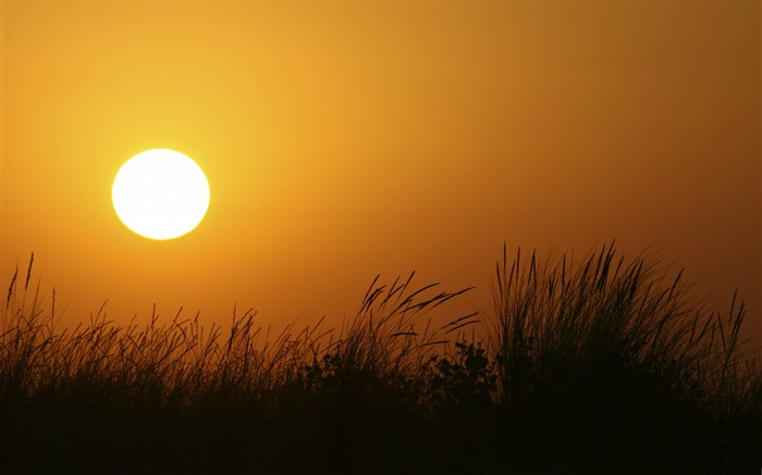 armona sunset-Nature Wallpapers Views:4846