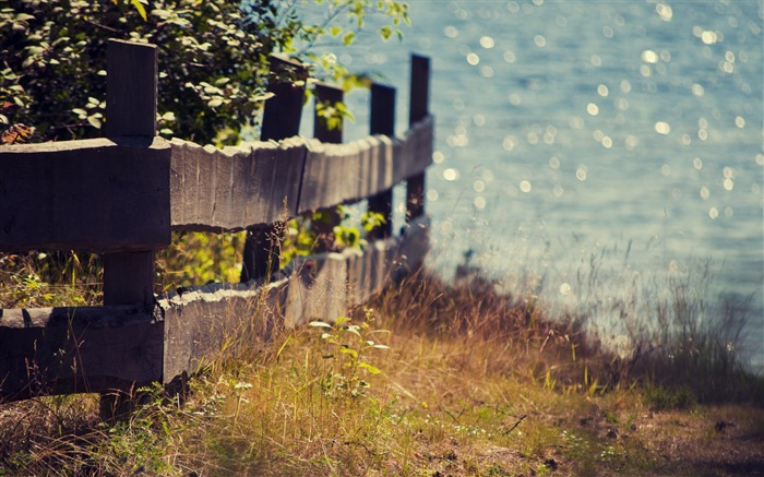 fence plants seaside-Summer landscape wallpaper Views:5546