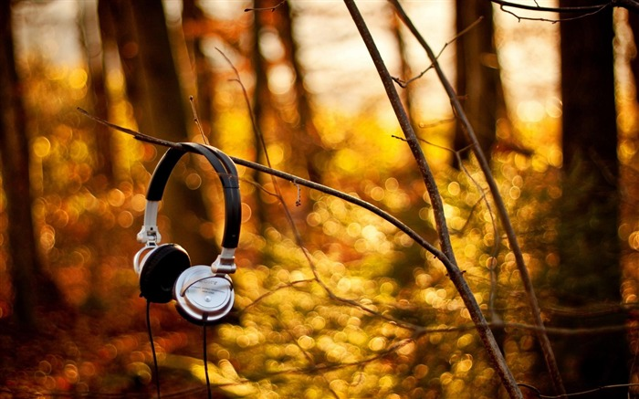 headphone-Summer landscape wallpaper Views:7976