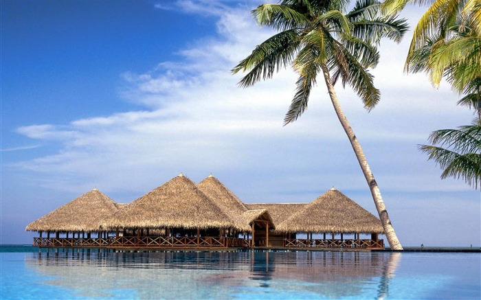 maldives island-High Quality wallpaper Views:7430