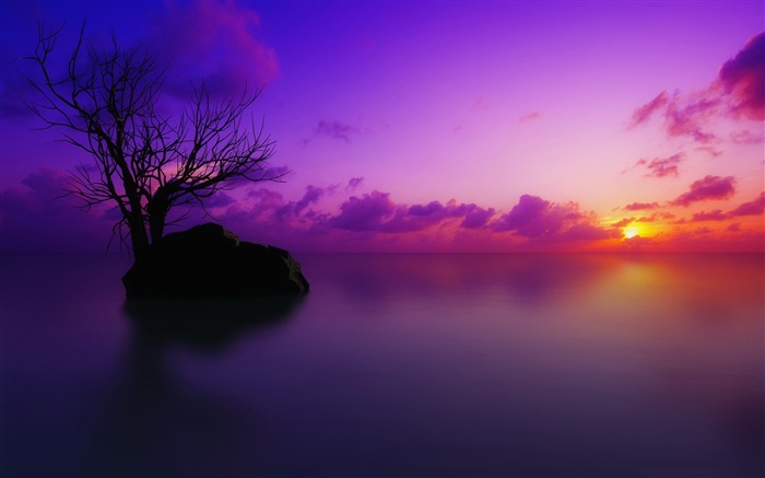 maldivian sunset-Nature Wallpapers Views:7563