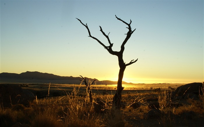 sunset namib desert-Summer landscape wallpaper Views:4401