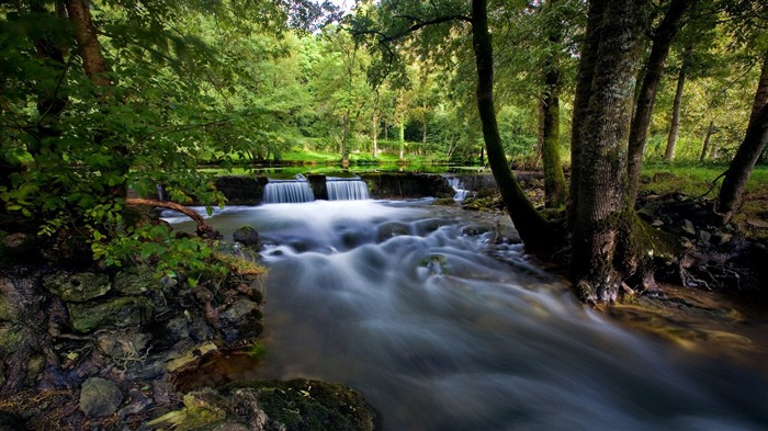 vegetation and waterfall-landscape photo wallpapers Views:3954