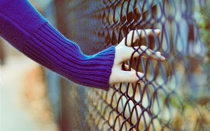 Hand Fence-High Quality wallpaper Views:4647