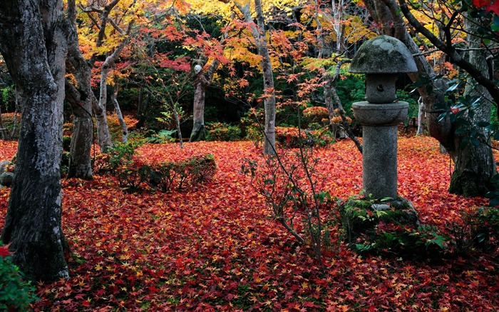 Another angle of the courtyard-Enkoji Temple Autumn wallpaper Views:6051 Date:10/17/2012 5:23:04 PM