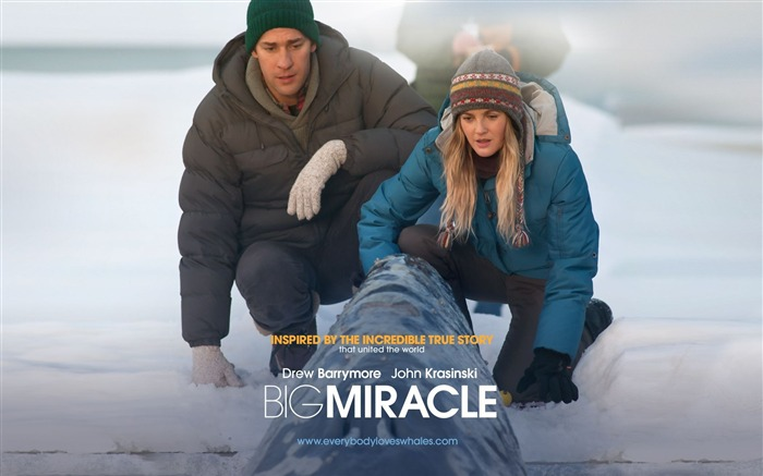 Big Miracle 2012 Movie HD Desktop Wallpapers 01 Views:3945