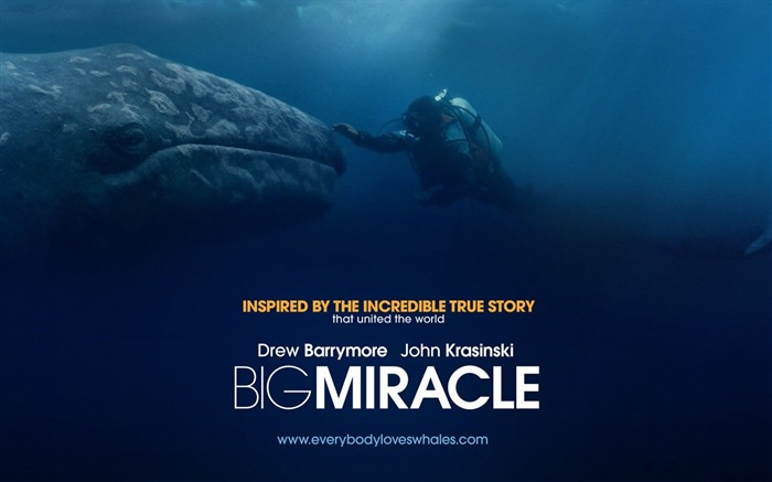 Big Miracle 2012 Movie HD Desktop Wallpapers 02