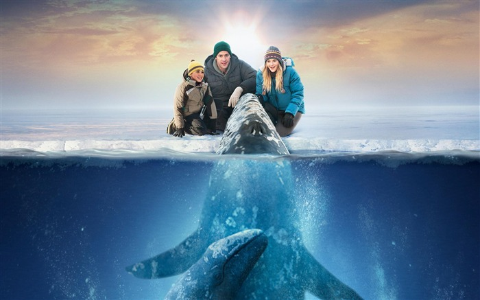 Big Miracle 2012 Movie HD Desktop Wallpapers 05 Views:3655