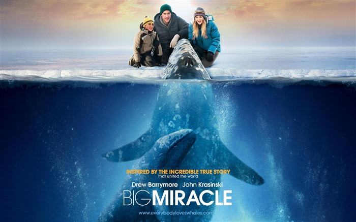 Big Miracle 2012 Movie HD Desktop Wallpapers 06 Views:4017