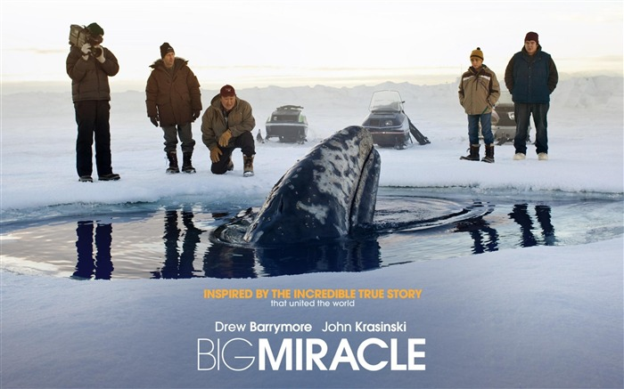 Big Miracle 2012 Movie HD Desktop Wallpapers Views:4554