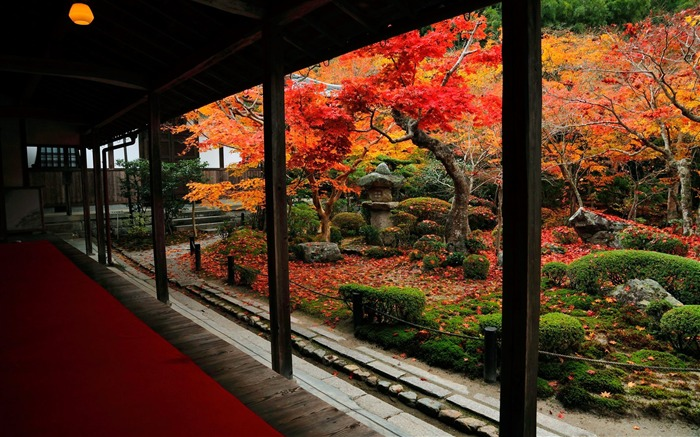 Courtyard and autumn leaves-Enkoji Temple Autumn wallpaper Views:18969 Date:10/17/2012 5:44:23 PM