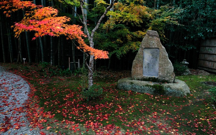 Stele-Enkoji Temple Autumn wallpapers Views:4944 Date:10/17/2012 6:11:21 PM