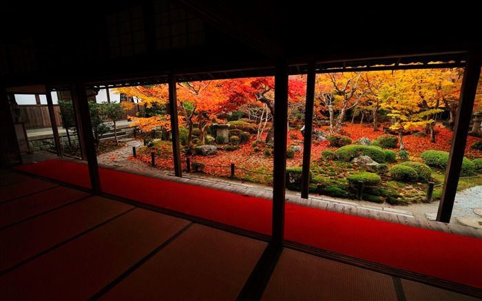 The 10 cattle Court Autumn-Enkoji Temple Autumn wallpapers Views:6358 Date:10/17/2012 6:05:23 PM