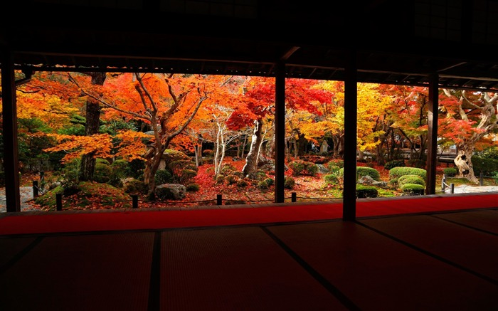 best angle of the autumn landscape-Enkoji Temple Autumn wallpapers Views:18510 Date:10/17/2012 6:13:59 PM