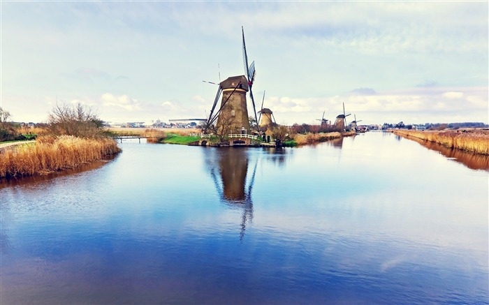 Dutch windmill-Small fresh landscape wallpaper Views:6113