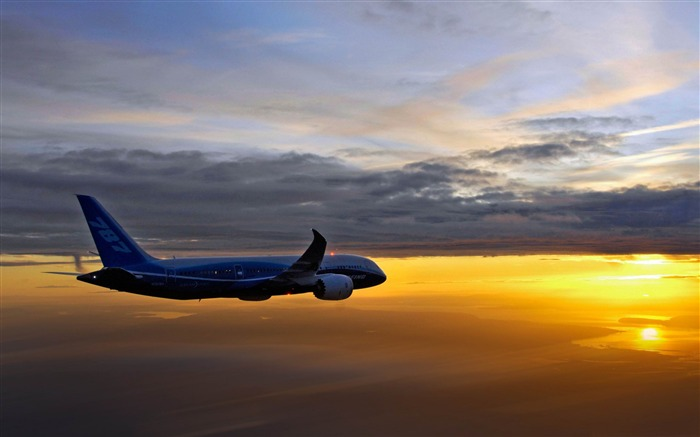 boeing 787 aerial-airplane Wallpapers Views:13603