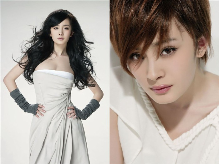 YangMi-Chinese star beautiful actress HD photo wallpaper 06 Views:5750