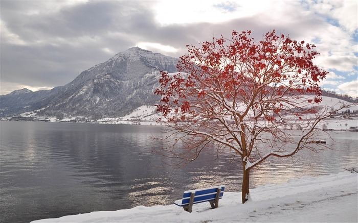 bench by the lake-Winter landscape desktop Wallpapers Views:5544