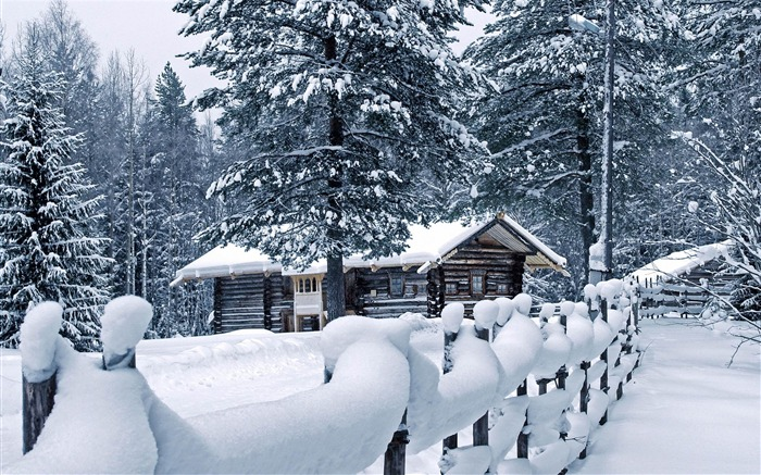 Cold winter landscape Desktop Wallpapers Views:16359