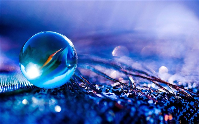 glass ball-2012 Macro Photography Featured Wallpaper Views:59846
