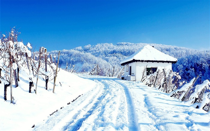 snowy up close-beautiful winter landscape wallpaper Views:6892