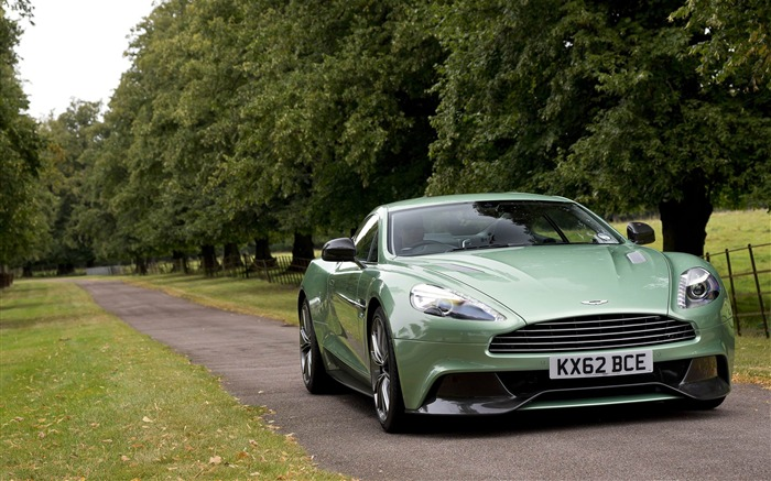2013 Aston Martin AM 310 Vanquish Auto HD Wallpaper 14 Views:3955