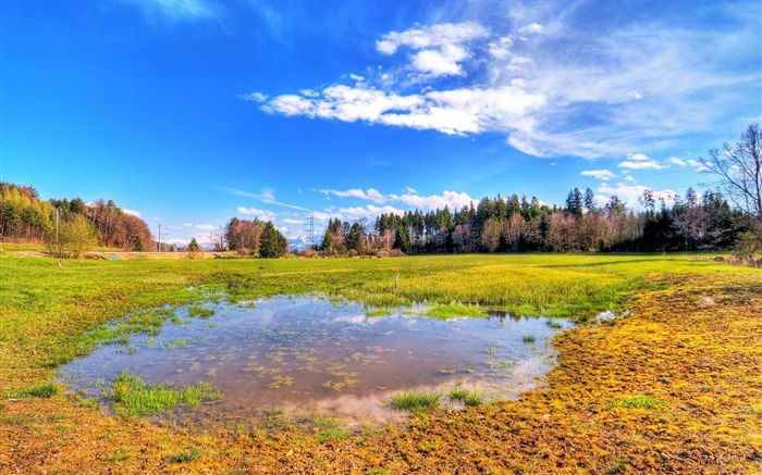 HDR flooded meadow-Beautiful scenery wallpaper Views:4186