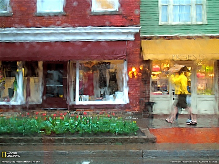 Street Scene Ontario-National Geographic Best Wallpapers of 2012 Views:3266