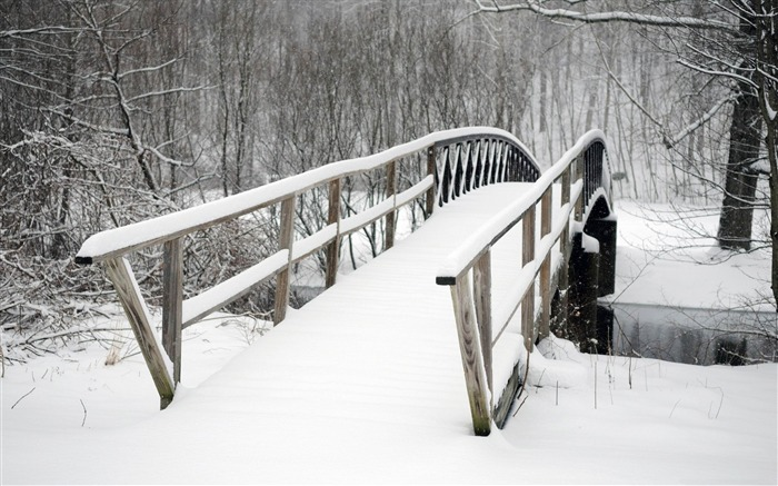 bridge covered in snow-winter natural landscape wallpaper Views:4576