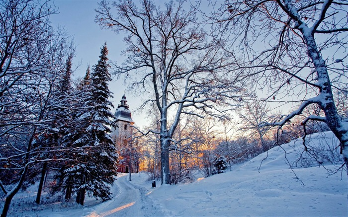 church tower-winter natural landscape wallpaper Views:8403