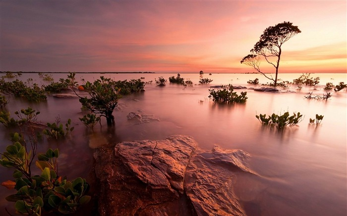 flooded area-Beautiful scenery wallpaper Views:3948