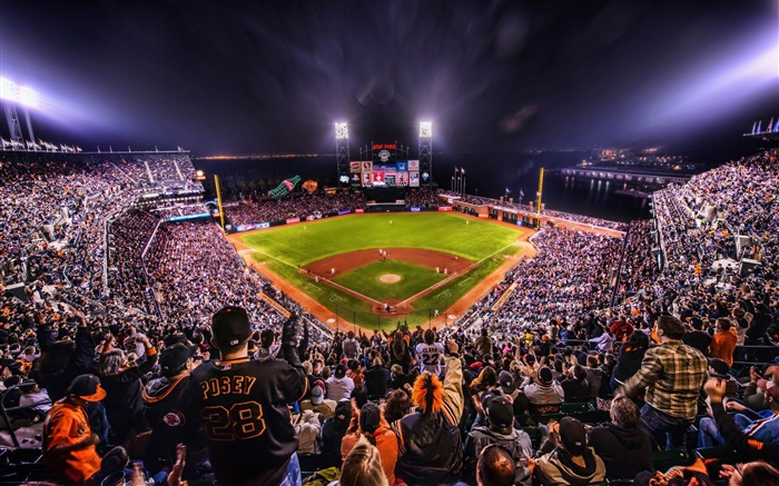 giants baseball arena-Sports Theme HD Wallpaper Views:9301